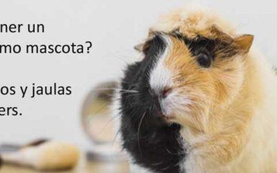 ¿Quieres tener un Hámster como mascota? Tips, consejos y jaulas para hamsters.
